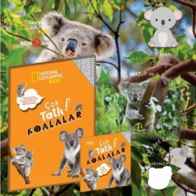 Çok Tatlı Koalalar Kolektif